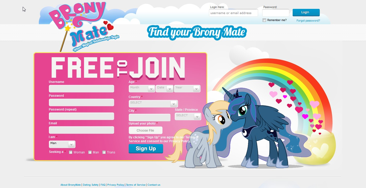 new dating website 2013