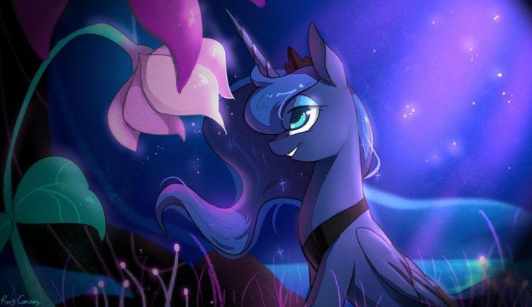 Rosy Canvas Princess Lun
